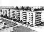 1971 год